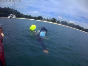 swimtribe-photo2
